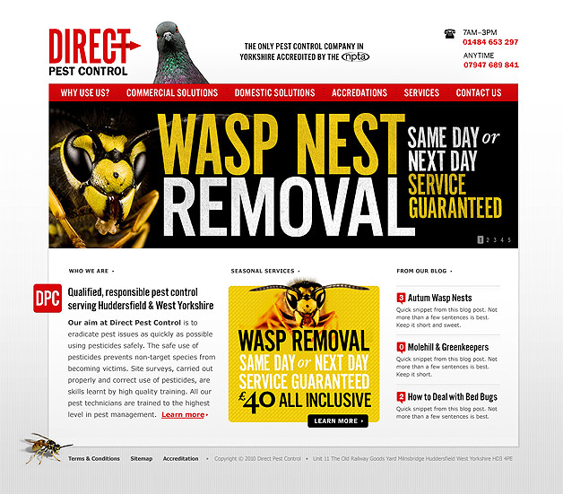 A screenshot of the Direct Pest Control homepage